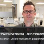 Consultant senior : un job motivant et passionnant